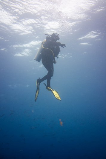 Galapagos Photos
